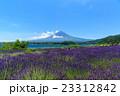 富士山 ラベンダー 23312842