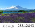 富士山 ラベンダー 23312843