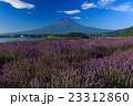 富士山 ラベンダー 23312860