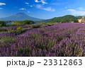 富士山 ラベンダー 23312863