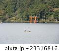 箱根神社 鳥居 23316816