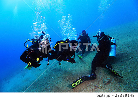 group of divers passing exams open water 23329148