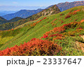 秋 風景 大源太山の写真 23337647