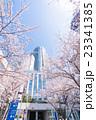 東京・桜の名所 23341385