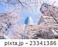 東京・桜の名所 23341386