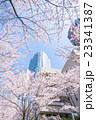 東京・桜の名所 23341387