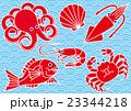 魚介類 青海波 23344218