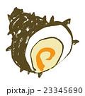 さざえ 栄螺 貝のイラスト 23345690