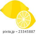 レモン 23345887