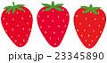 イチゴ 23345890