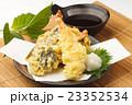 天ぷらの盛り合わせ 23352534