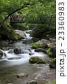 渓流 清流 川の写真 23360983