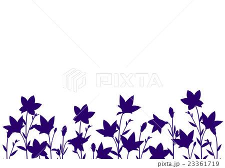キキョウの背景イラスト白背景 紺色のイラスト素材 23361719 Pixta