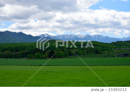 初夏の北海道の大自然 23363212