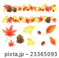 秋 紅葉 セットのイラスト 23365093
