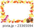 秋 紅葉 小鳥のイラスト 23365094