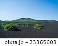 伊豆大島 23365603
