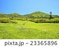 八甲田山 草原 自然の写真 23365896