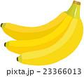 バナナ 23366013
