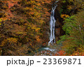 西沢渓谷 紅葉 秋の写真 23369871