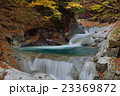 西沢渓谷 紅葉 秋の写真 23369872