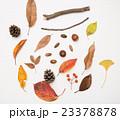 秋のセット 23378878