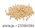 大豆 白バック 23384384