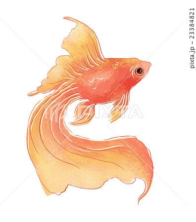 ねこ イラスト 金魚原画 カード ハンドメイドマーケット Minne