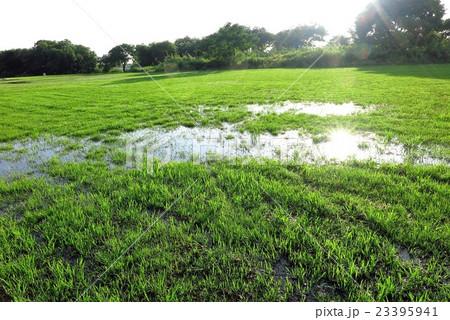 雨上がりのグランドの芝生&水たまり。河川敷、大阪府枚方市 23395941