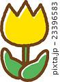 チューリップ(黄色) 23396583