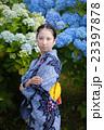 紫陽花と女性 23397878