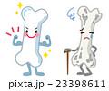 骨 丈夫 老化のイラスト 23398611