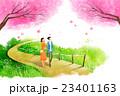 さくら サクラ 桜のイラスト 23401163