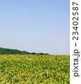 丘と山と空 23402587