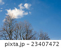 秋冬の空 23407472