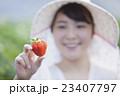 いちご農家の女性 23407797
