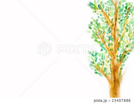木々のイラスト素材 [23407886] - PIXTA