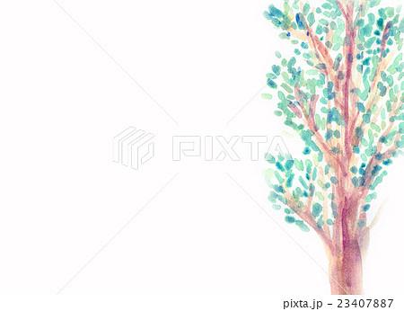 木々のイラスト素材 [23407887] - PIXTA