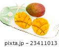 マンゴー カットフルーツ 23411013