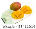 マンゴー カットフルーツ 23411014
