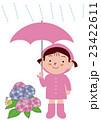 梅雨 傘 紫陽花のイラスト 23422611