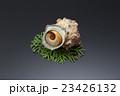食材 貝 海鮮 サザエ 鮮魚 新鮮 食べ物   23426132