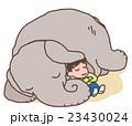 小象と少年 23430024