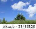 爽やかな夏の高原 23436325