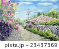 沖縄観光 竹富島のスケッチ ブゲンビリア 23437369