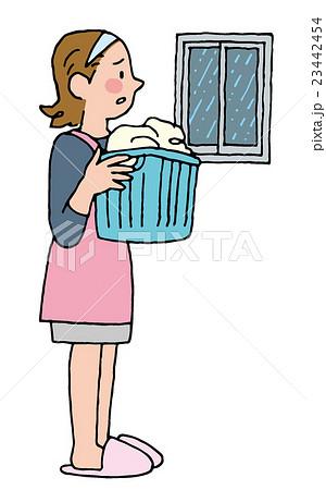洗濯 23442454