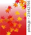 紅葉と流水 23442766