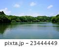 夏の雄蛇ヶ池 23444449