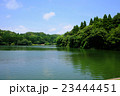 夏の雄蛇ヶ池 23444451