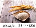 米の収穫イメージ 23444850